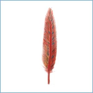 Rode veer | Ansichtkaart | 10 x 10 cm | Veldjuwelen